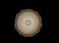 icone tronc d'arbre
